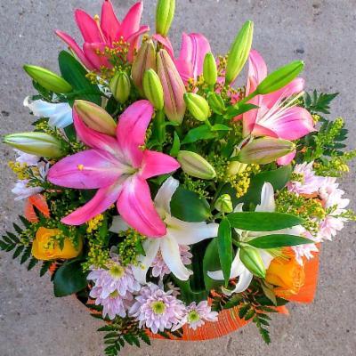 Flores Zamora Floristerias En La Provincia De Zamora